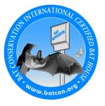 OBC (Organization for Bat Conservation)
